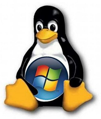 Windows and Linux